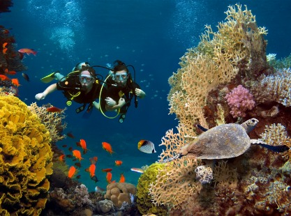 exploring the Kandooma Thila reefs, south male atoll, maldives