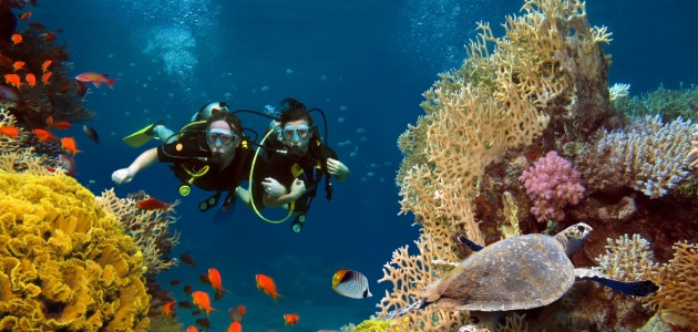 divers swimming along the reef, Maldives