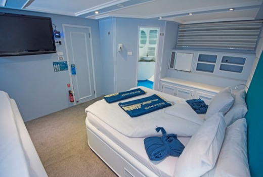 M/Y blue Fin liveaboard vessel king suite