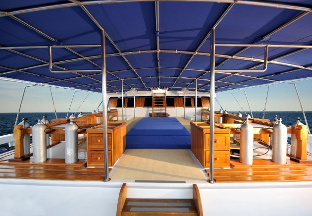Indonesia, Liveaboard, Indo Siren, image,