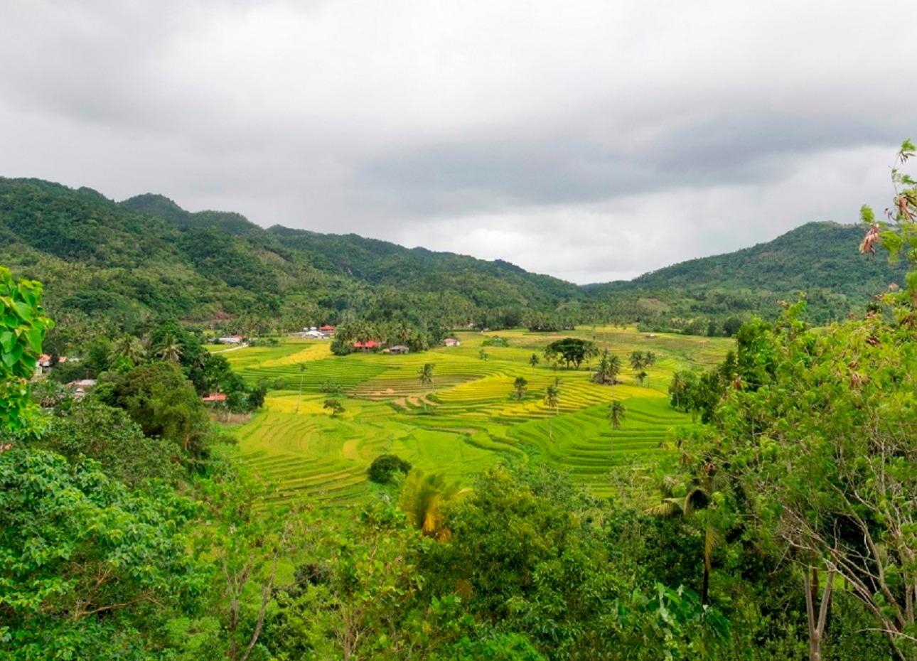 Philippines, Resort, Panorama, image,