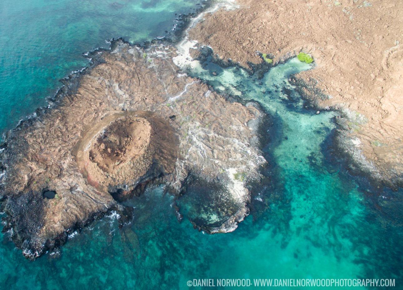 Galapagos Islands reef