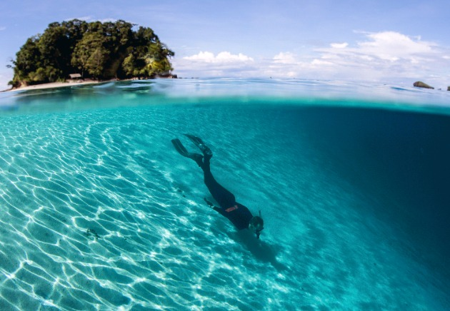 Solomon Islands underwater and above island image