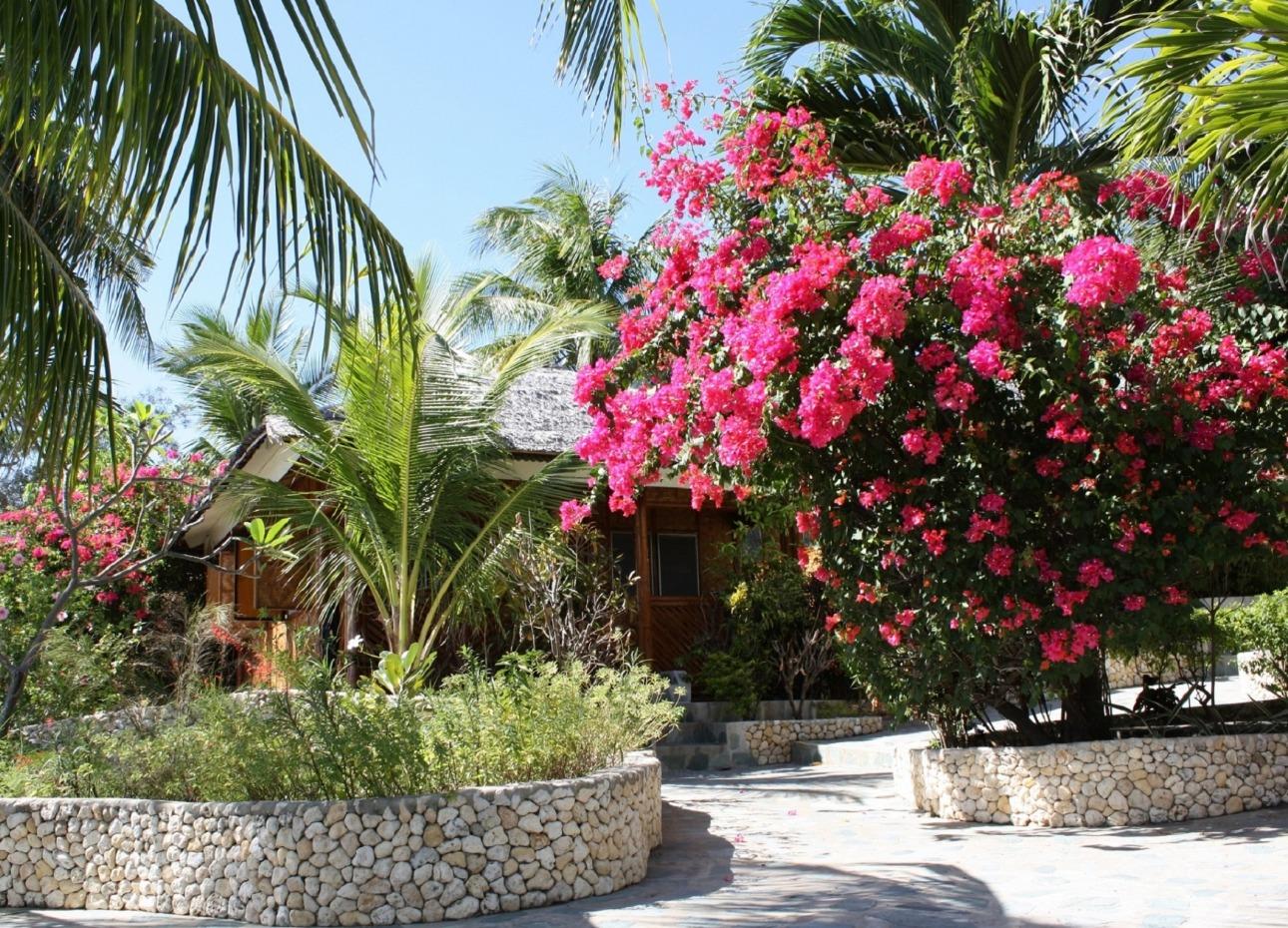 Philippines, Moalboal Magic Island, Dive Resort, Cottage Gardens, image,
