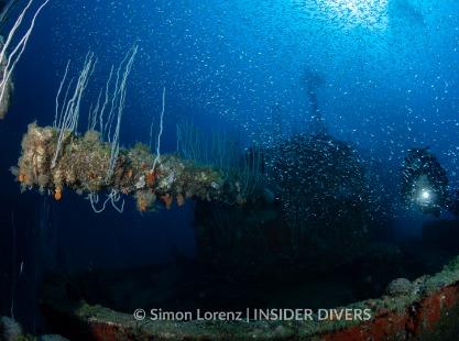 USS Lamson dive site wreck