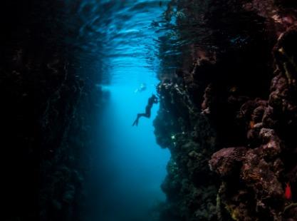Munda Wall Dive, image