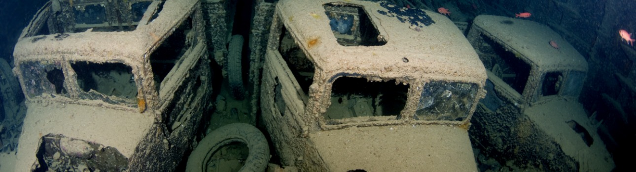 THE SS THISTLEGORM: FROM THEN TO NOW