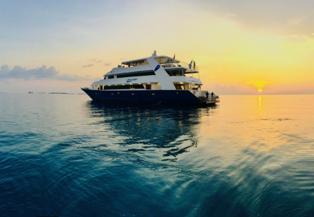 Land Based Diving in the Maldives, image