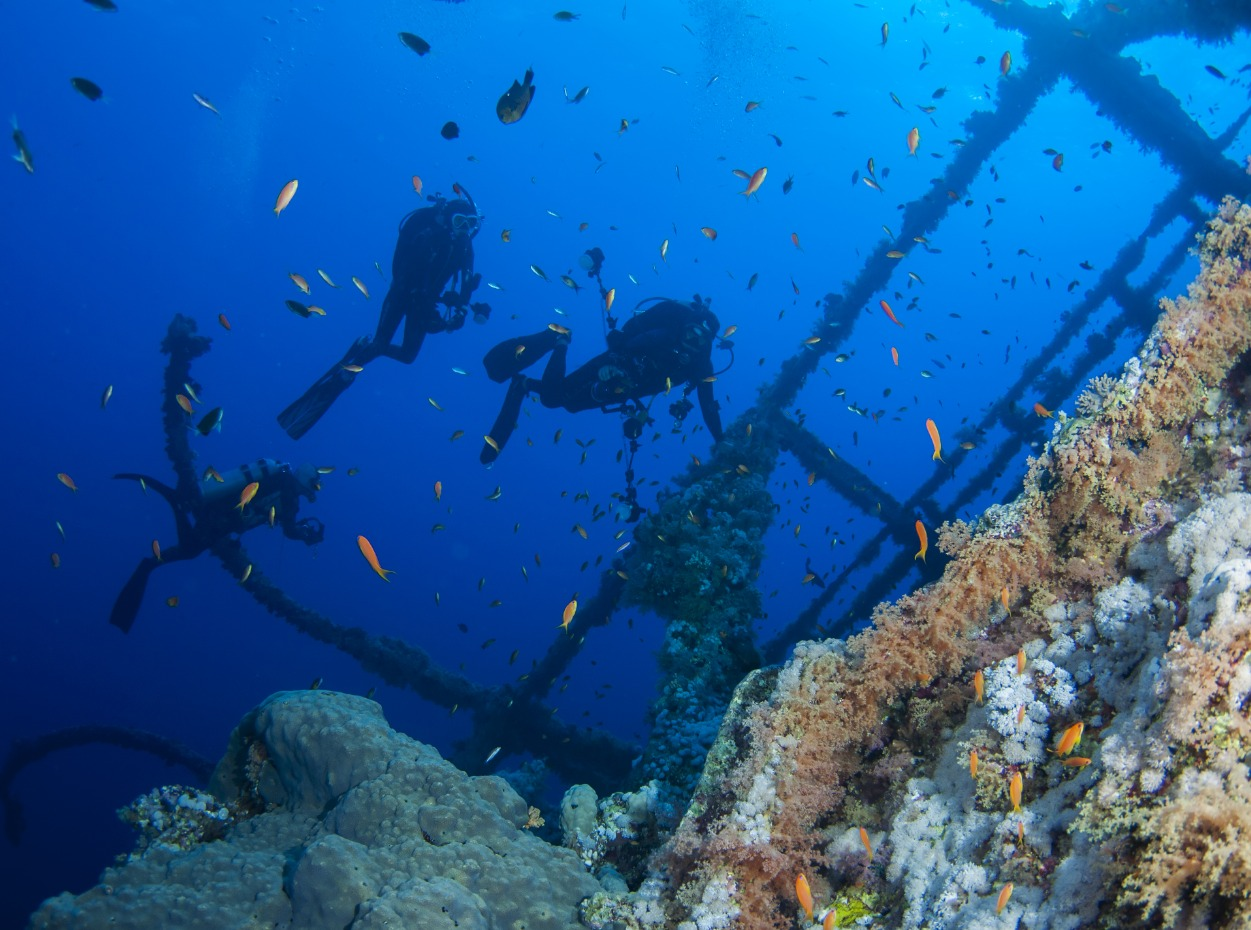 Numidia wreck at Big Brother, Egypt, Red Sea